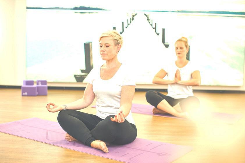 LKH_yoga-krebs.jpg